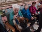 Návštěva psích mazlíčků
